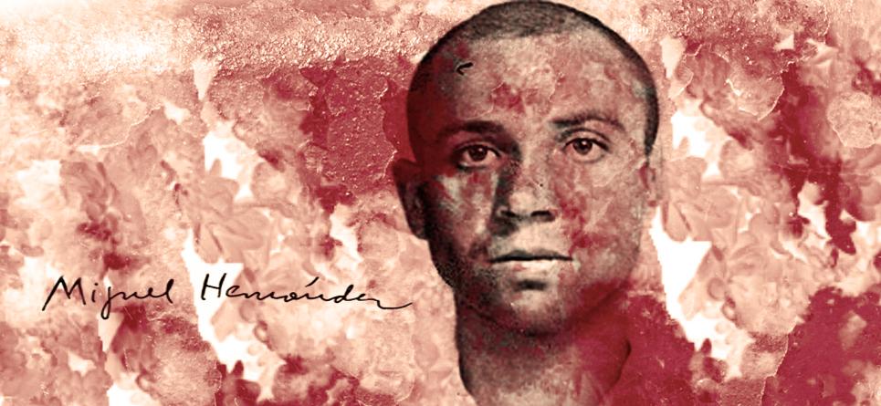 La  poesía  armada  hasta  los dientes: Miguel Hernández